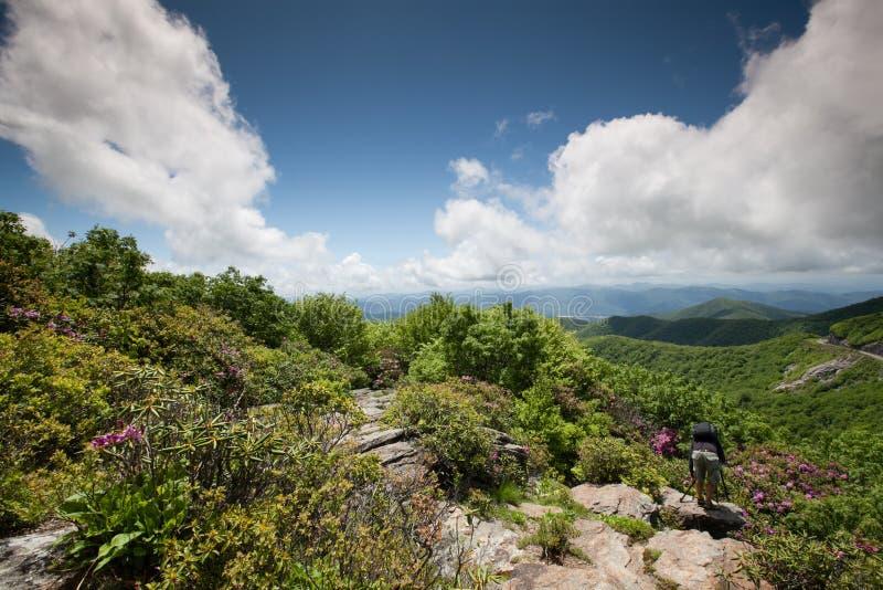 崎岖的庭院石峰西部NC山 库存图片