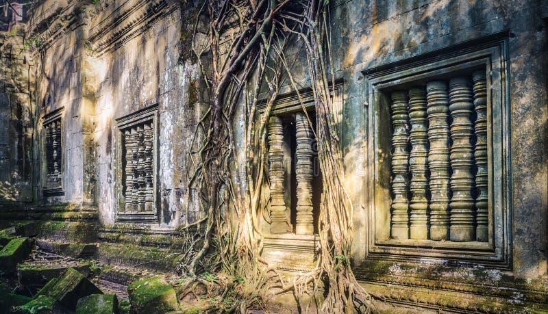 崩山大仑Mealea或桶盖Mealea寺庙 angkor banteay柬埔寨湖lotuses收割siem srey寺庙 柬埔寨 全景 库存照片