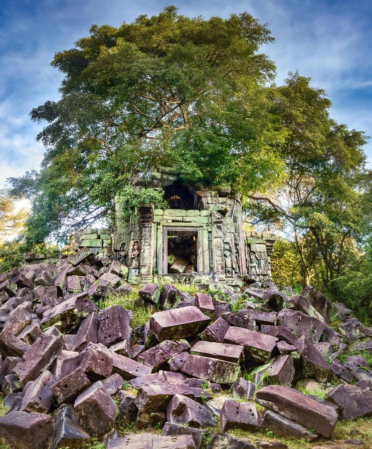 崩山大仑Mealea或桶盖Mealea寺庙 angkor banteay柬埔寨湖lotuses收割siem srey寺庙 柬埔寨 免版税库存图片