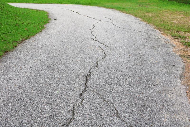 崩裂的柏油路 街道在公园 免版税库存照片