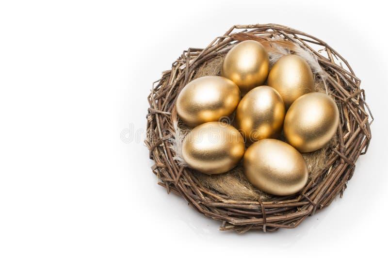 巢用在白色背景的金黄鸡蛋 在巢的金黄鸡蛋 图库摄影