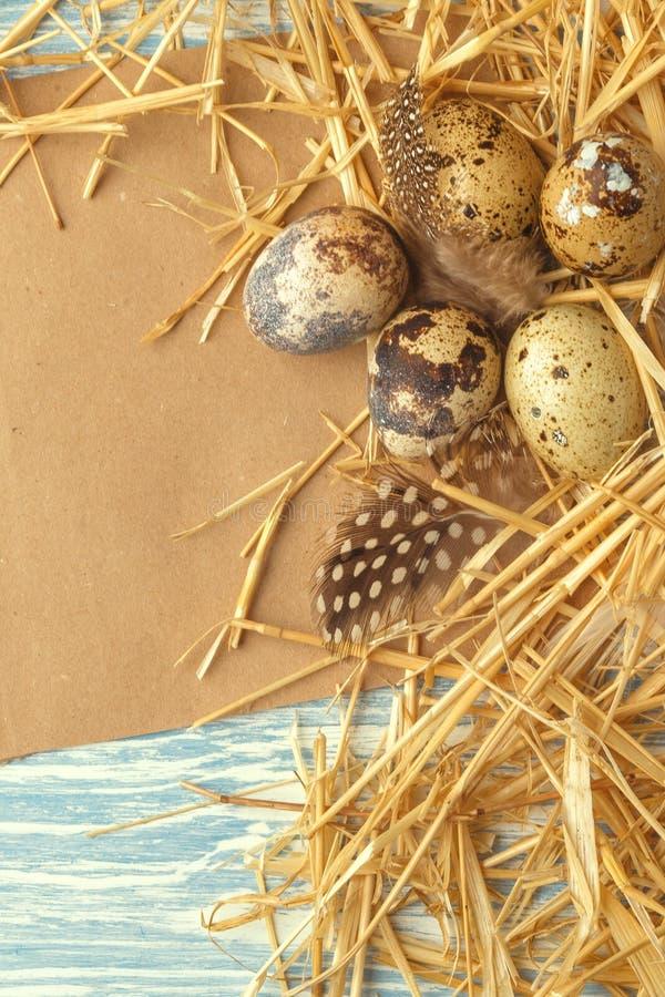 巢用在蓝色木背景,与拷贝空间的顶视图的复活节彩蛋 免版税库存图片