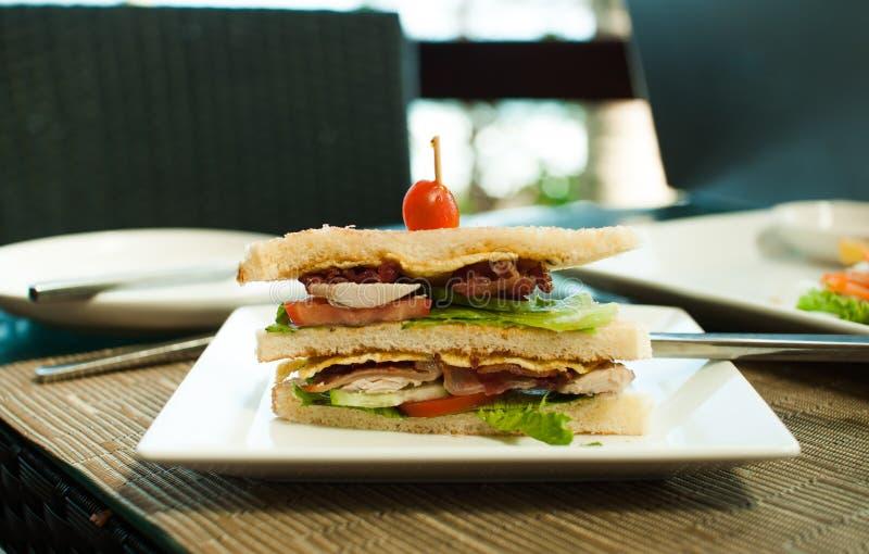 工作午餐的三明治 库存图片