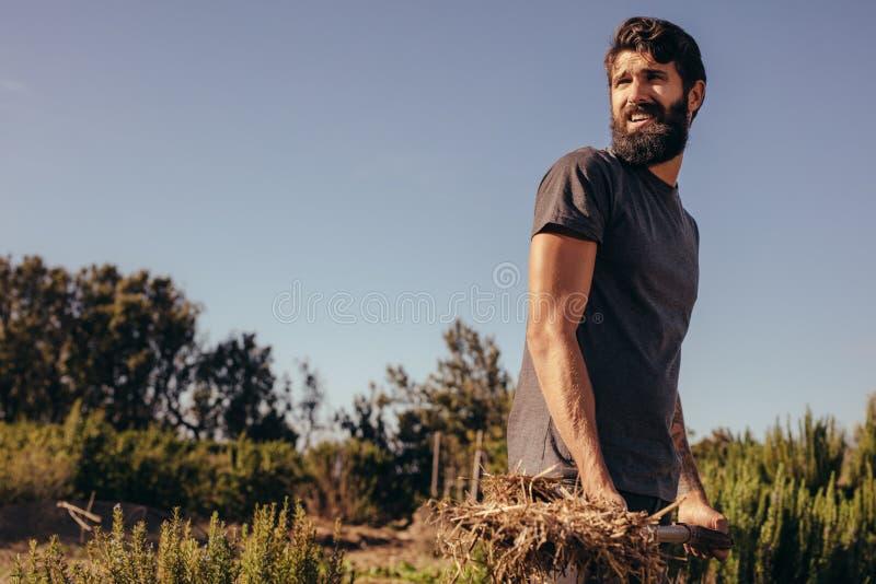 工作在农场的男性农夫 免版税库存照片