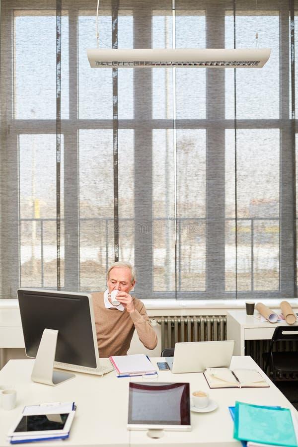 工作在办公室的高级生意人 免版税库存图片