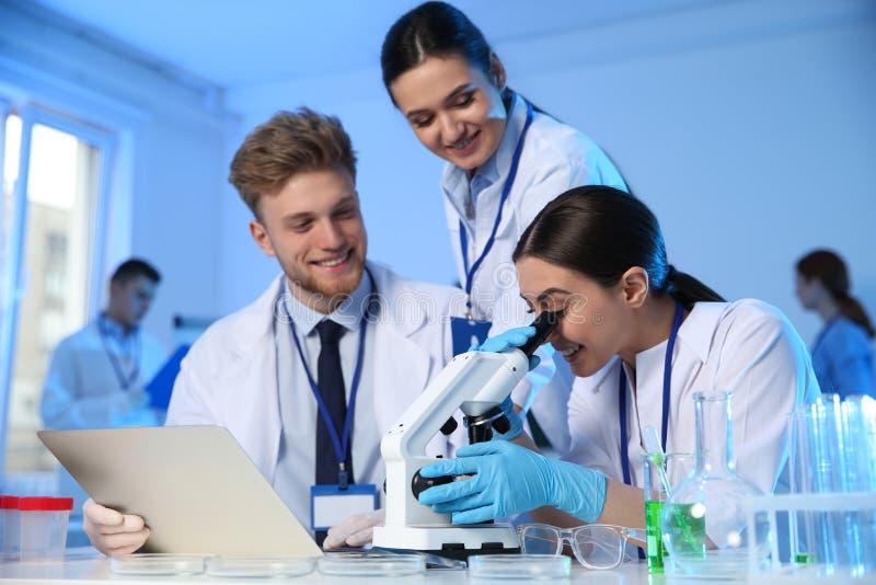 工作在化学实验室的小组科学家 库存图片
