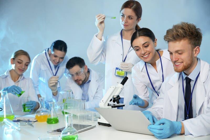 工作在化学实验室的小组科学家 免版税库存图片