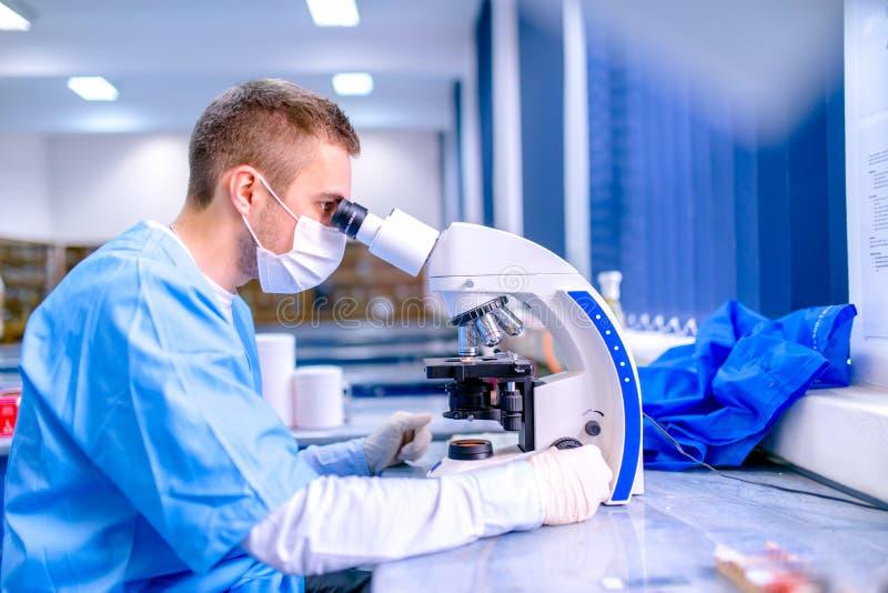 工作在化学实验室,审查的样品的科学家 免版税库存照片