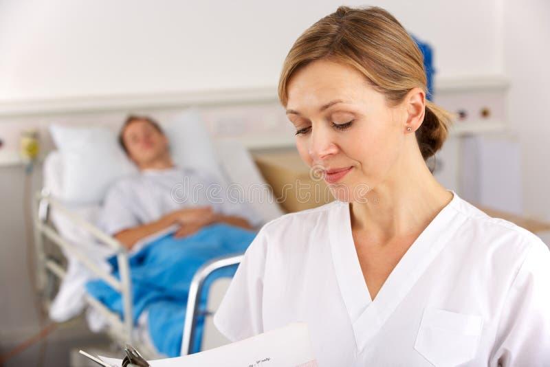 工作在医院病房的美国护士 免版税库存图片