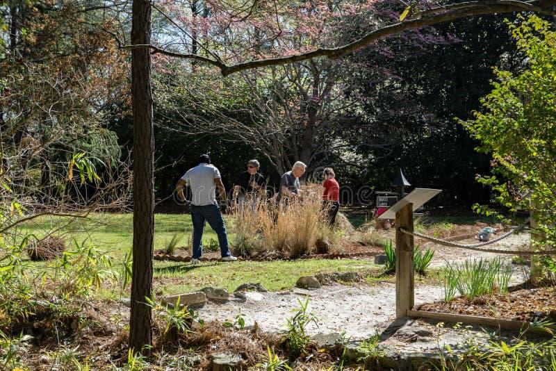 工作在天鹅湖的志愿者使庭院, Sumter, SC现虹彩 免版税库存照片