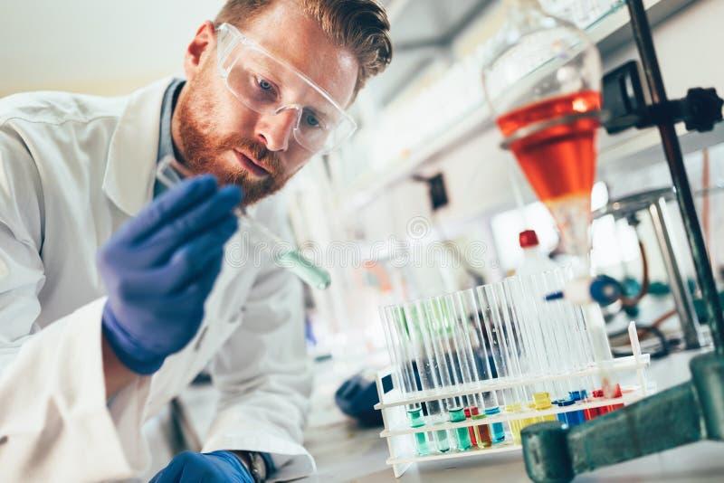 工作在实验室的化学的可爱的学生 库存图片