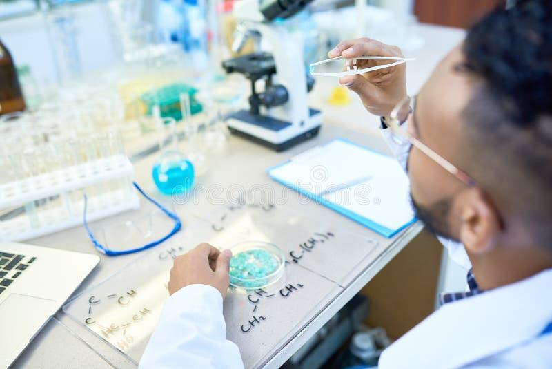 工作在实验室的年轻科学家 免版税库存图片