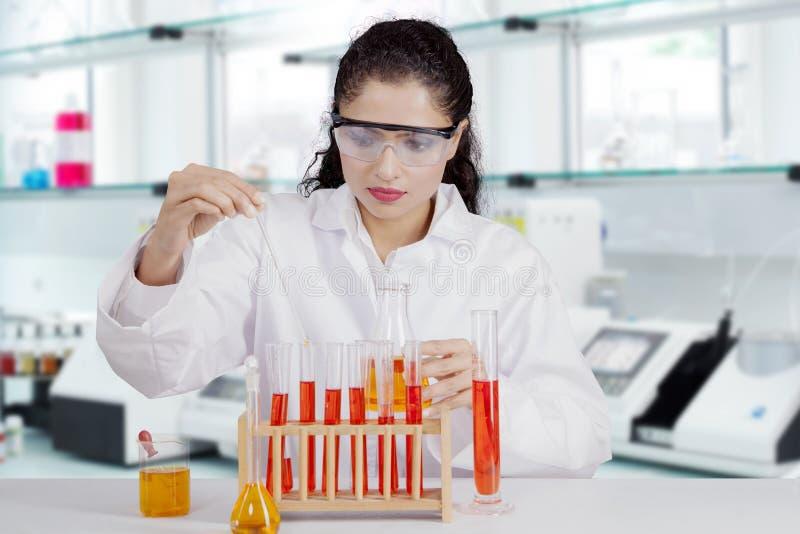 工作在实验室的美丽的印地安科学家 免版税图库摄影
