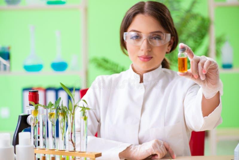 工作在实验室的美丽的女性生物工艺学科学家化学家 免版税库存照片