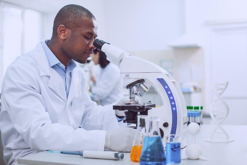 工作在实验室里的专业美国黑人的生物学家 图库摄影