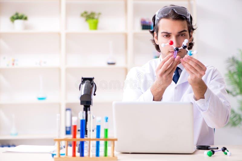 工作在实验室里的年轻男性科学家 免版税库存照片