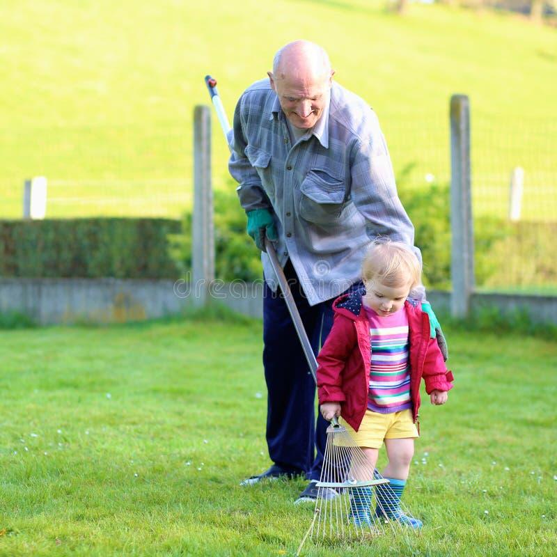 工作在庭院里的祖父和孙 免版税库存照片