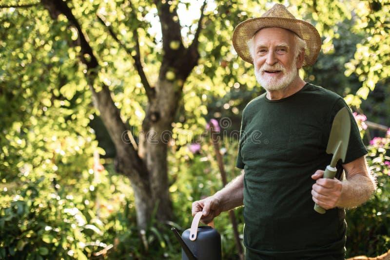 工作在庭院里的老人在夏天 免版税库存照片