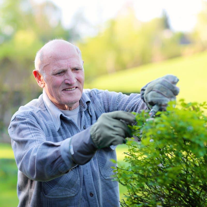 工作在庭院里的老人 图库摄影