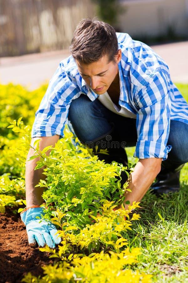 工作在庭院里的花匠 免版税库存图片