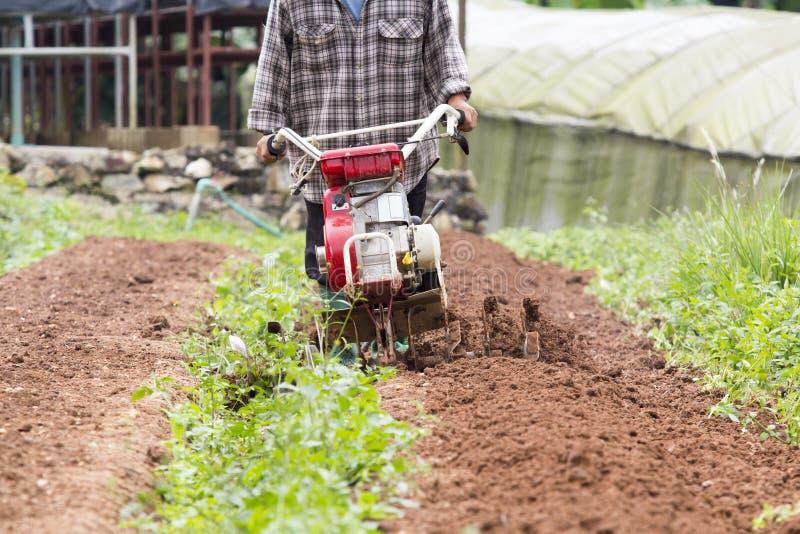 工作在庭院里的转台式耕地机 库存照片