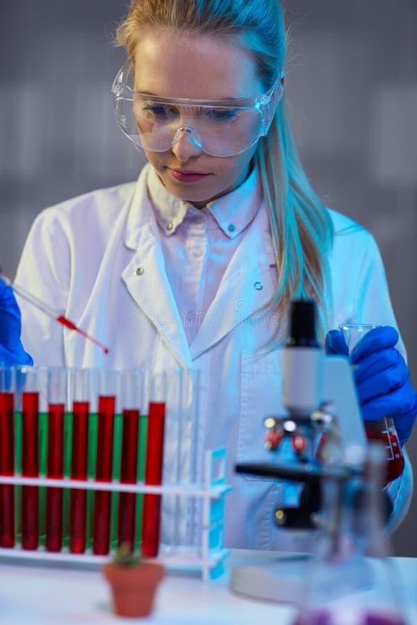 工作在晚上的严肃的女性化工技术员在实验室里 库存图片