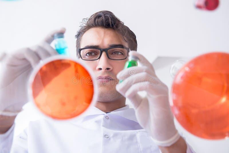 工作在有危害化学制品的实验室的化学家 免版税库存图片