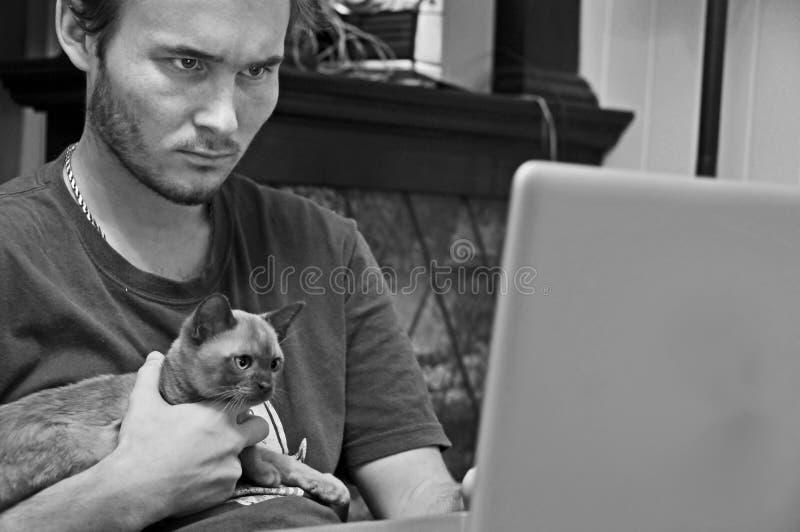 工作在有宠物猫小猫的计算机的年轻人 免版税库存照片