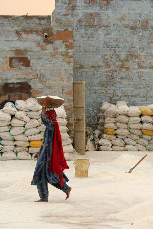 工作在盐工厂的妇女 图库摄影