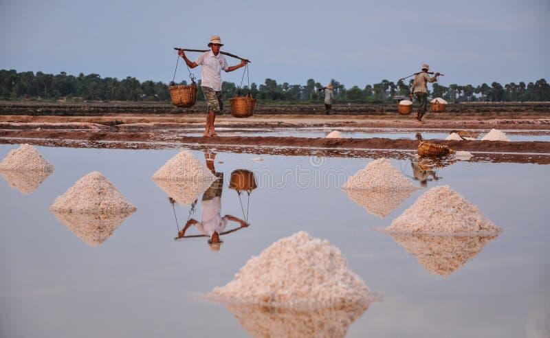 工作在盐领域的人们在柬埔寨 库存图片
