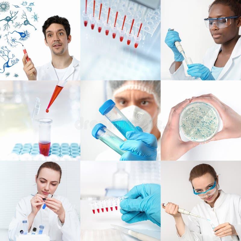 工作在研究所或实验室,集合的科学家 免版税库存图片