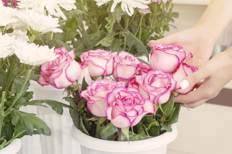 工作在花店的卖花人女孩 新鲜的春天花软的树荫,包裹在装饰纸 Floristry?? 免版税库存图片