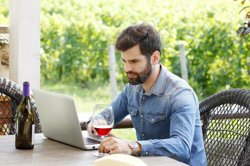工作在葡萄园里的年轻人 免版税库存图片