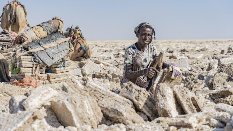 工作在Danakil消沉的盐平原的盐矿工在埃塞俄比亚在冬天季节期间 免版税库存照片