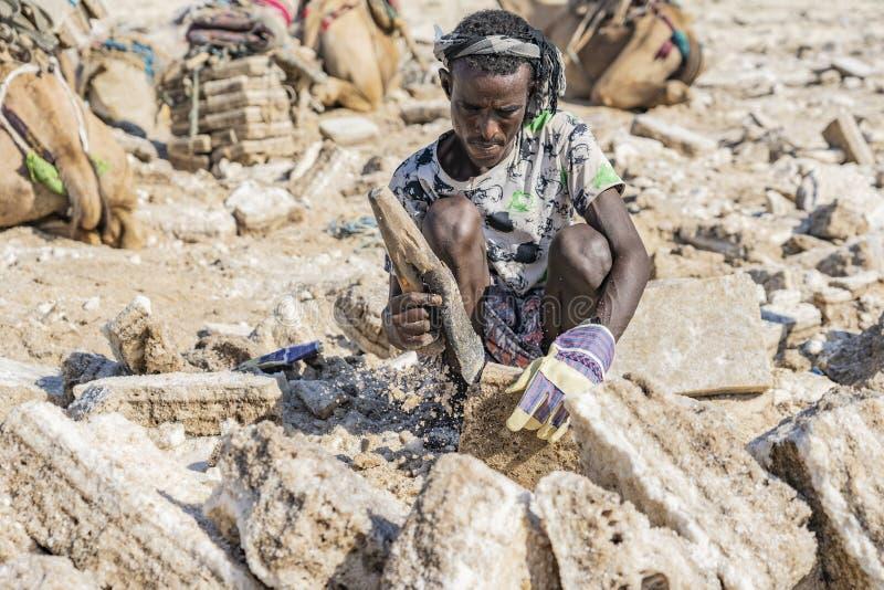 工作在Danakil消沉的盐平原的盐矿工在埃塞俄比亚 免版税库存图片