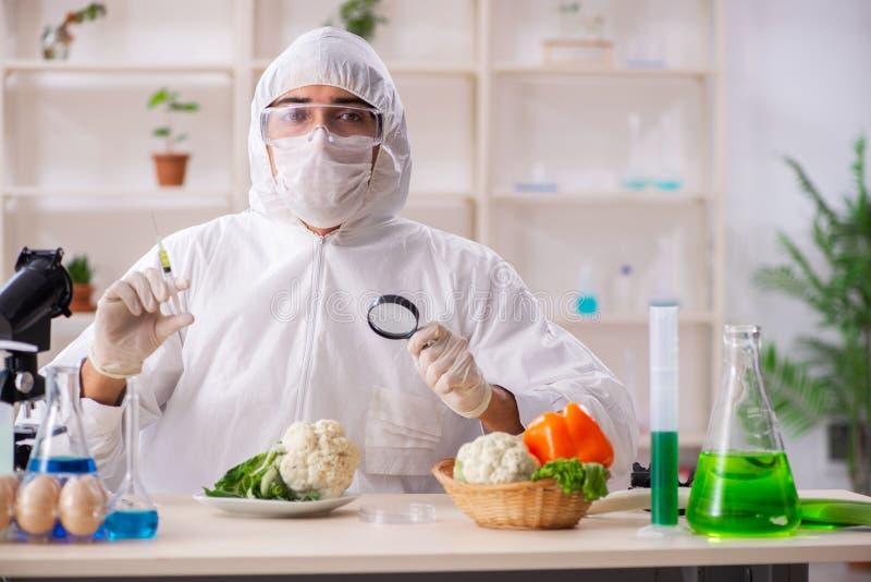 工作在gmo水果和蔬菜的实验室的科学家 免版税图库摄影