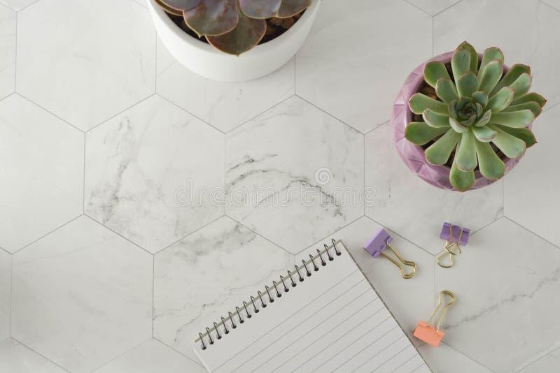 工作场所被称呼的平的位置 笔记本、笔和多汁植物在大理石桌上 免版税库存图片