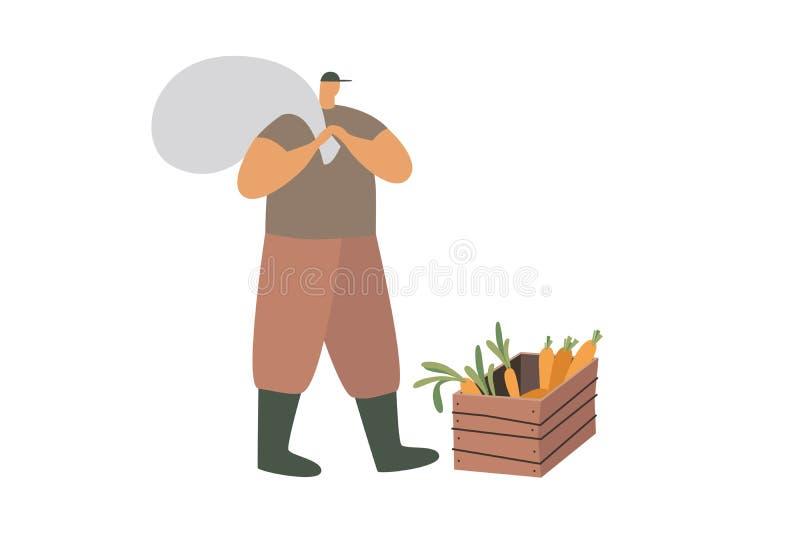 工作服和起动的一位农夫与在他的满袋在一个条板箱红萝卜附近站立 库存图片