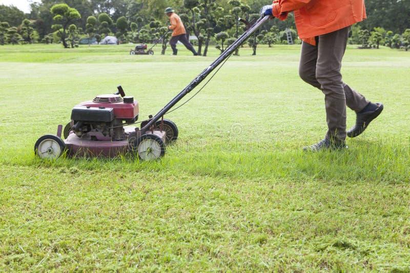 工作者切口与割草机的草地 图库摄影