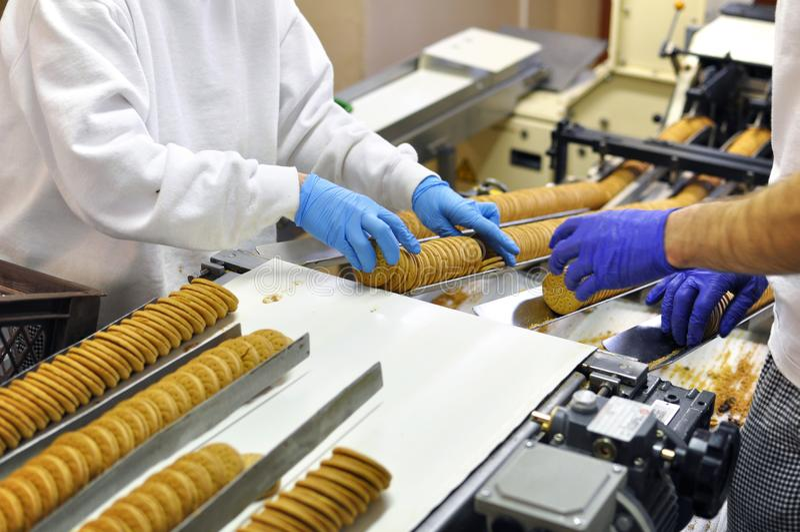 工作者在一条传送带的排序饼干在工厂- producti 免版税库存图片