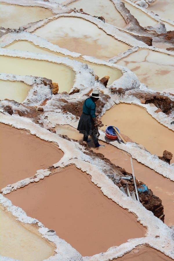 工作者在盐蒸发池塘 Maras 神圣的谷 库斯科地区 秘鲁 免版税库存照片