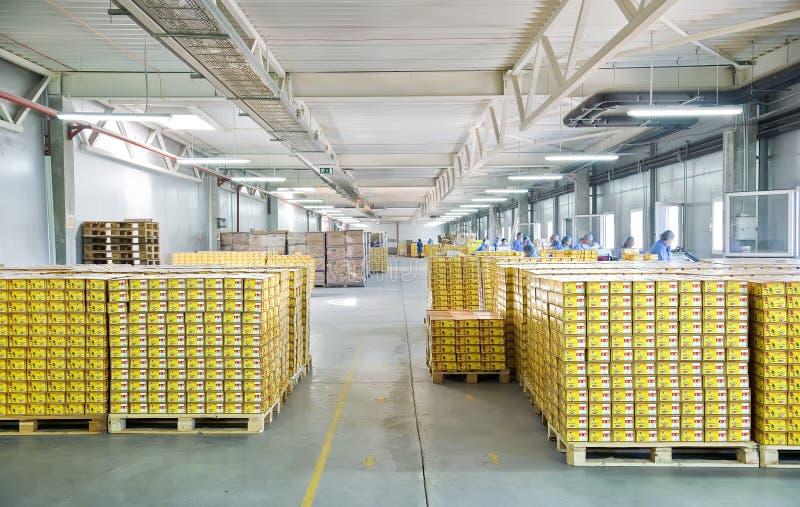工作者在仓库里 免版税图库摄影