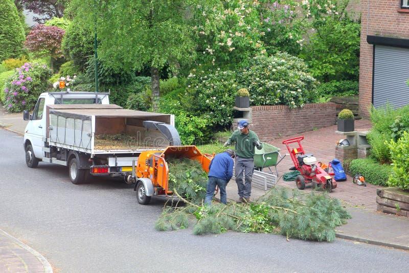 工作者在整理树以后使用木切菜机 免版税库存图片