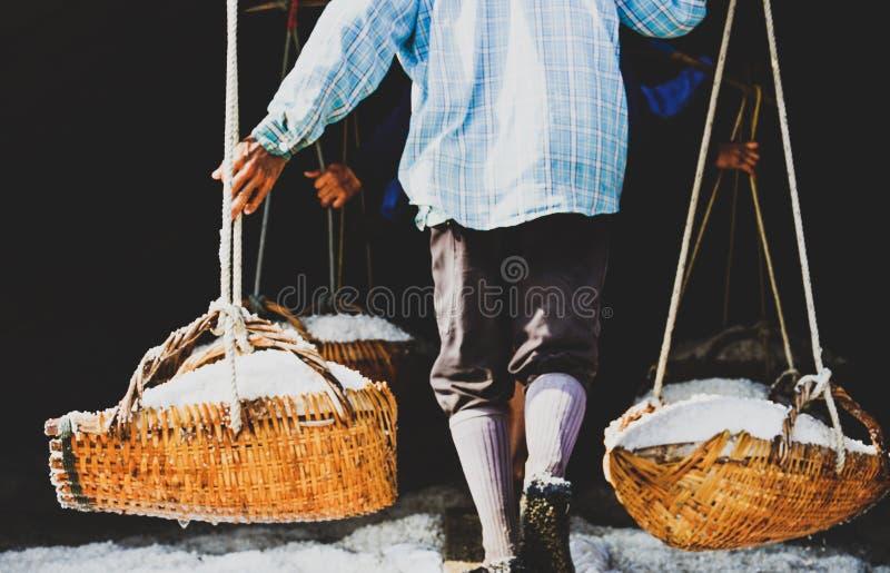 工作者是运载海盐,收获海盐,盐溶做 免版税库存照片