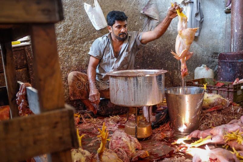 工作者煮沸的鸡 免版税库存照片