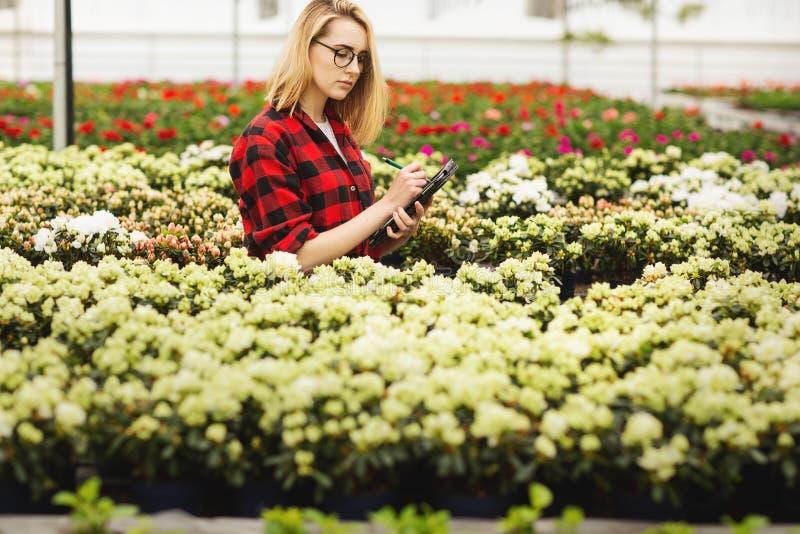 工作自温室的年轻女人 有吸引力的女孩检查和计数花,使用片剂计算机 免版税图库摄影