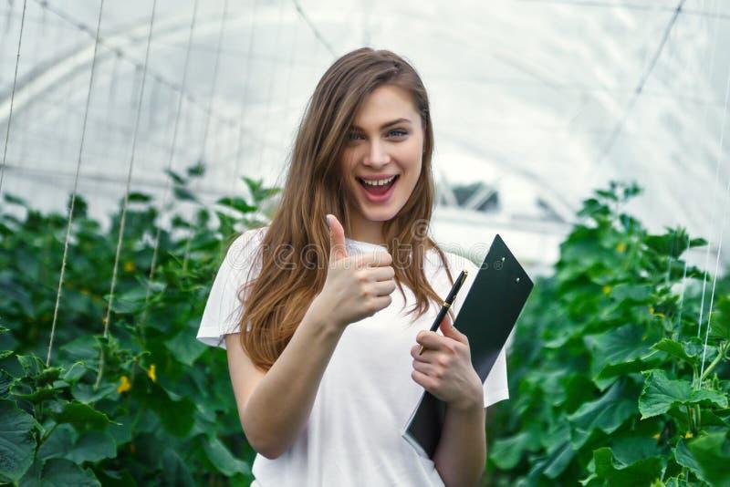 工作自温室的美丽的女孩农艺师 免版税库存图片