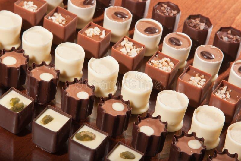 工匠块菌状巧克力 免版税图库摄影