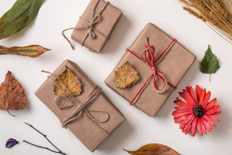 工艺手工制造礼物和秋天植物 库存照片