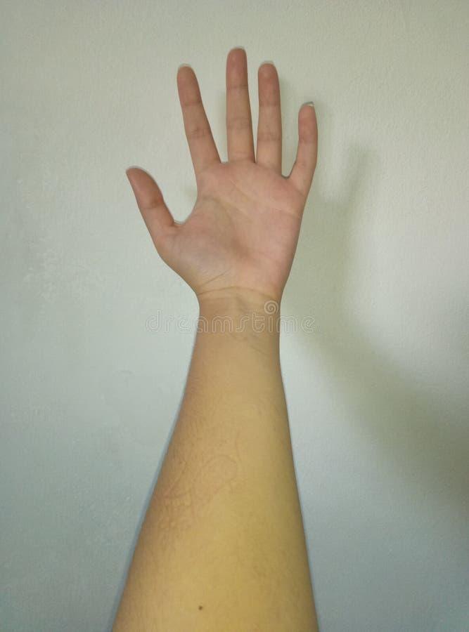 左手明亮的颜色 免版税库存照片